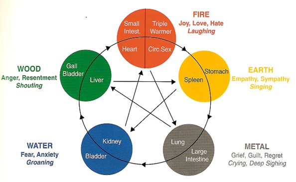 Model of how the elements in Chinese medicine relate to each other, and can explain how acupucnture works from a Chinese medical perspective.